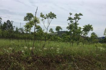 Bán đất thổ cư 10000m2 cách Quốc Lộ 21A 800m, thuộc Hòa Sơn