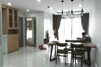 Cho thuê gấp căn hộ Panorama, Phú Mỹ Hưng, Q7 DT: 121m2, giá 25 triệu/tháng. LH Mạnh 0909 297 271