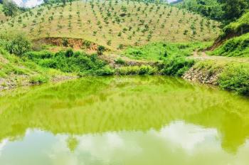 Cần bán 22ha trang trại cam tại thị trấn Lương Sơn có thể kết hợp làm sinh thái, giá 9,5 tỷ