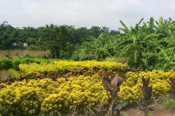 Bán đất xóm Hưu Trí view sông khu Ecopark huyện Gia Lâm, DT: 280m2, giá 2,9 tỷ, LH: 0904090102