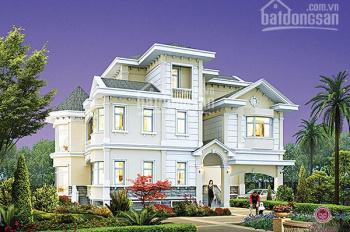 Bán biệt thự lâu đài Chateau Phú Mỹ Hưng, DTXD: 310m2, DT đất 242m2, vị trí đẹp. LH: 091 218 3060