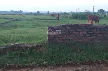 Đất sổ đỏ chính chủ khu Quan Giai, Đồng Trúc, 184m2, mặt tiền 9,2m, gia đình cần bán gấp, SĐCC