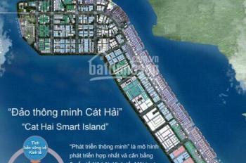 Chính chủ cần bán đất lô góc tái định cư Cát Hải, gần Vinfast