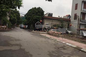 Chính chủ bán đất tại TDP Voi Phục, Trâu Quỳ, Gia Lâm. DT 82m2, đường 8m