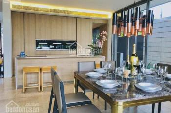 Cần bán biệt thự Holm Thảo Điền view sông giá 36 tỷ, DT: 806m2 đất-410m2 vườn-đã sổ, LH: 0933883337