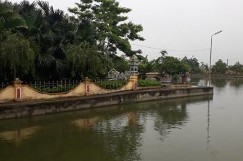 Cần bán trang trại tại Đông Hưng - Thái Bình