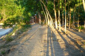 Bán trang trại nuôi tôm ngay Quốc Lộ 29, Xã Hòa Tâm, Huyện Đông Hòa, Tỉnh Phú Yên