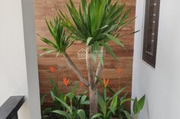 Cho thuê nhà MT Phan Châu Trinh, ngang 8m, vị trí đẹp
