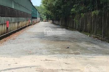 Bán đất xây xưởng kho Bình Phước trả góp 0% LS giá rẻ, sổ riêng thổ cư, 960tr/2000m2, LH 0962607550