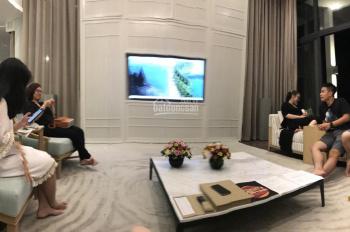 Tôi đang cần bán gấp căn villa mặt biển Vin Bãi Dài, giá gốc cho thuê 165 triệu/tháng LH 0945880866