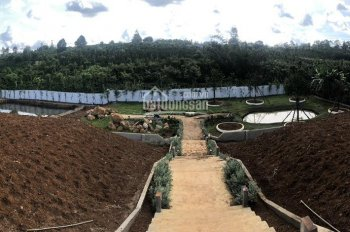 BĐS sinh lời đất nền biệt thự Dambri, gần nút giao cao tốc, giá 900 ngàn/m2, view đẹp, đủ pháp lý