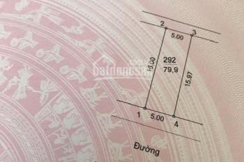 Bán 80m2 đất nền dự án Cienco 5 Tân Lập, Đan Phượng, Hà Nội chính chủ