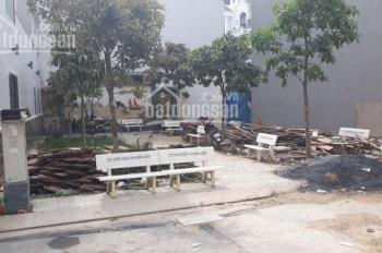 Đất vip gần trường tiểu học Hoàng Văn Thụ 4x16m, 20m đường số 30, P6. Giá 4,95 tỷ, 0903 01 65 66