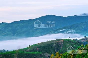 Đất nền nghỉ dưỡng Bảo Lộc Green Valley - LH: 0939706385