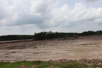 Sang nhượng lô đất sân bay biển lộc an Hồ Tràm giá 1,5 tr/m2