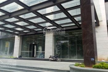 Cho thuê mặt bằng thương mại tầng 1,2 tại tòa nhà Hoàng Cầu Skyline, 36B Hoàng Cầu, Đống Đa, Hà Nội