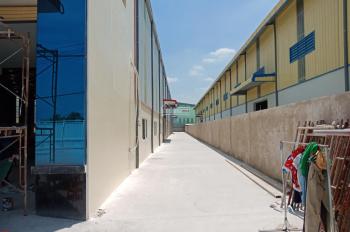 Chính chủ cho thuê 04 kho xưởng mới xây dựng, DT: 2.700m2. LH: 0961.498.812