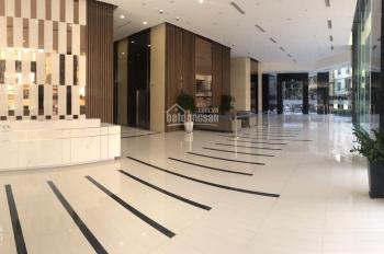 BQL tòa Discovery cho thuê sàn văn phòng đẹp diện tích 85 - 115m2, giá tốt nhất quận Cầu Giấy