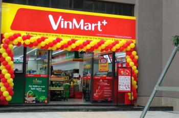 Kiot KD cực đỉnh 987 Tam Trinh, Vinmart đang thuê 38tr/th, cam kết 5 năm, 133m2 giá 5.5 tỷ