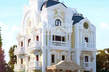 Bán nhà mặt tiền đường Số 3, KDC Vĩnh Lộc 450m2 giá 34 tỷ. tel 0908687704