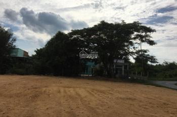 Cần bán đất tại đường 825, xã Hoà Khánh Đông, Đức Hòa, Long An, diện tích 125m2, công chứng ngay