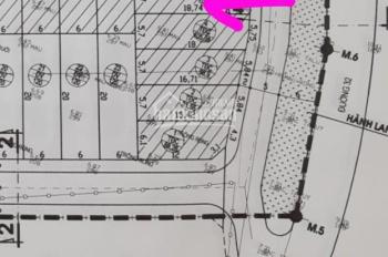 Chính chủ chuyển nhượng lô đất 107 và 121m2 có thể làm nhà xưởng tại Cầu Phùng