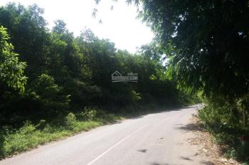 Bán đất xã Yên Trung - Thạch Thất mặt đường Tỉnh lộ 446, đối diện khu du lịch Thác Bạc Suối Sao