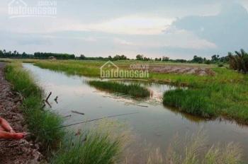 Cần bán 1000m2 đất cây lâu năm xã Phước Khánh, huyện Nhơn Trạch, đường 4m, giá 1.6 tỷ