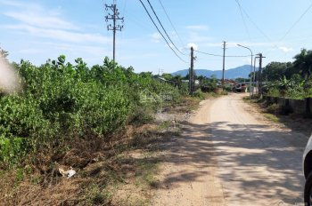 Chỉ với 1,3 triệu/1m2 sở hữu ngay lô đất 4000m2 gần ngã tư Lục Quân xã Cổ Đông, Sơn Tây, HN