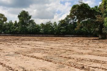 Bán đất chính chủ Tân Định, Bến Cát, cách ngã Ba Lăn Xi 40m, dt 12.000m2, sổ chính chủ