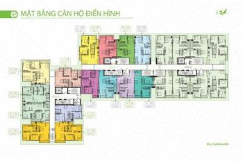 3.9 tỷ căn góc 3 PN 100.9m2 tầng cao CK 5%, Ecolife Tây Hồ, khu đô thị Tây Hồ Tây, 0983918483
