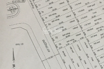 Bán đất đường Trục - Bình Lợi, 5x20m, 100m2 giá 8 tỷ