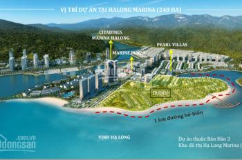 Chính chủ cần bán liền kề, biệt thự mặt biển Hạ Long của CĐT Bim Group. LH 0929052891
