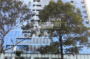Hot! Văn phòng cho thuê tại tòa nhà lớn, Hoàng Văn Thụ, Q. Tân Bình - DT: 755m2, LH giá tốt nhất