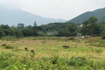 Cần bán 24000m2 đất full thổ cư tại Tiến Xuân, Thạch Thất, thích hợp phân lô