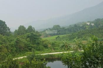 Bán bán 10ha trang trại lợn, trong đó 7ha cam + bưởi da xanh đã cho thu hoạch, có ao hồ rộng 1ha