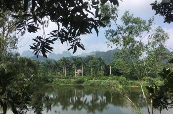 Bán lô đất 5700m2 có 400m2 đất ở tại Lương Sơn, Hòa Bình, đất view hồ lớn, có ao, cây ăn quả