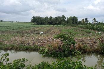 Chủ cần tiền bán gấp lô đất 2224m2 huyện Nhơn Trạch, Đồng Nai, có sổ riêng, giá rẻ 4.300tỷ
