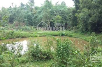 Giá hạt dẻ, bán lô đất với tổng DT 1.8 ha, tuyệt vời dành cho khu sinh thái, LH 0983100636