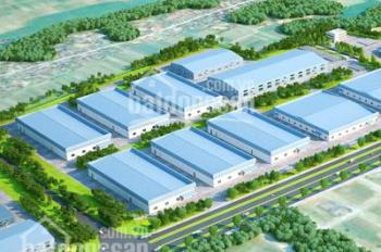 Bán trang trại 8 ha hiện đang cho thuê 450 triệu 1 tháng, giá bán 55 tỷ. ĐT 0909,136,007