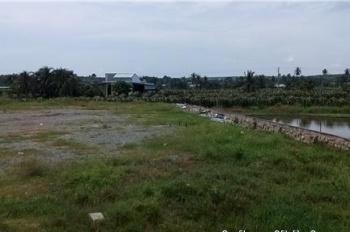 Cần bán khu đất vị trí tuyệt đẹp MT Trần Văn Giàu tiện làm dự án phân lô, biệt thự nhà vườn