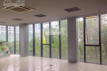 Cho thuê văn phòng tòa nhà hạng B khu vực Hoàng Cầu, Ô Chợ Dừa, DT có 130 - 150m2 có bãi đỗ ô tô