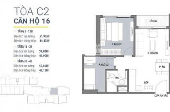 Bán căn hộ 15 (51m2) tòa C2 - giá 1,95 tỷ, dự án D'Capitale Trần Duy Hưng - Liên hệ: 0966495866