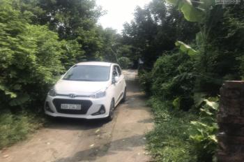 Bán đất đấu giá thôn Hội, Cổ Bi, Gia Lâm, Hà Nội
