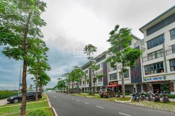 Cần bán gấp căn nhà phố shophouse DT đất 130m2 thuộc KĐT Gamuda, Hoàng Mai, Hà Nội, 0936332412