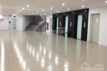 Chính chủ cho thuê biệt thự DT sử dụng 500m2, giá 70 triệu/th. LH 0906011368