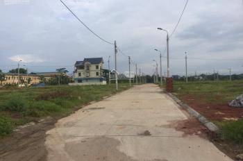 Bán đất đấu giá trung tâm xã Đại Đồng - Thạch Thất, giá rẻ nhất thị trường