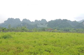 Cần bán 4013m2 đất xe container đi thoải mái, phù hợp làm nhà xưởng tại Lương Sơn - Hòa Bình