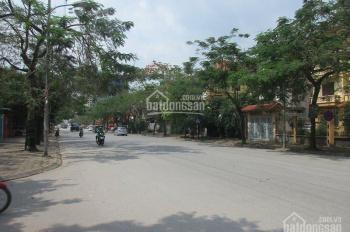 Cho thuê biệt thự mặt đường Trần Thủ Độ KĐT Pháp Vân DT 300m2 x 4T, đã hoàn thiện, kinh doanh tốt