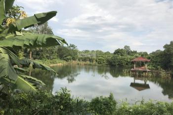 Bán nhà vườn 40.000m2 trong đó có 1200m2 đất ở xây dựng, có hồ rộng 1ha, khuôn viên đẹp, giá 12 tỷ